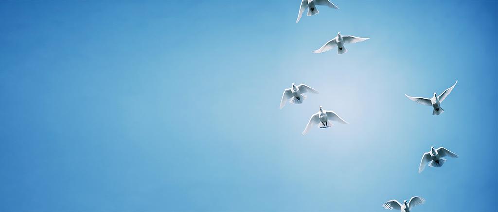 <h1>第9回〈世界平和に関する講演会〉開催のお知らせ</h1>
