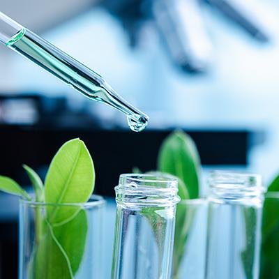 2020年度『下中科学研究助成金』募集要項