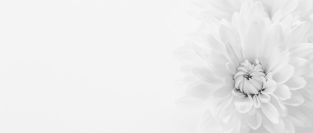 <h1>【訃報】平凡社の創業者・下中弥三郎氏の孫・大西とく様</h1>