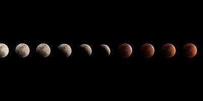 高校生への星食観測指導と天文学への貢献
