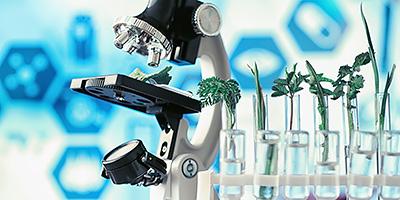 2021年度 「下中科学研究助成金」関連情報